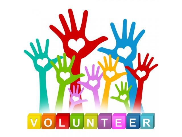 Uniți în  Diversitate!  - Cea de-a patra campanie de voluntariat